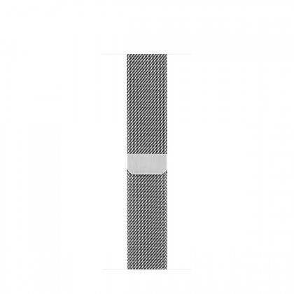 Apple - Silver Milanese Loop